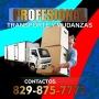 transporte y mudanzas profesional