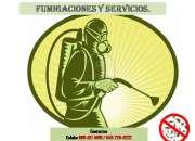 Oferta de Fumigacion en la Zona Oriental desde RD$ 800 pesos