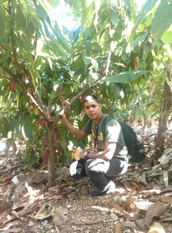 Ingeniero agrónomo ofrece sus servicios profesionales