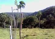 Venta de Solar en Cercado Alto Jarabacoa RMS-102
